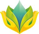 Logo Flori & cadouri
